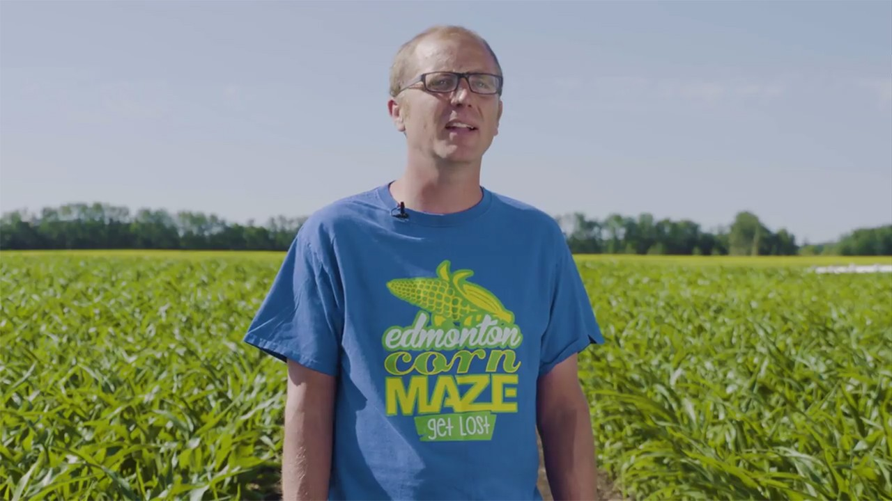 Anthem Corn Maze | Pixel Vault