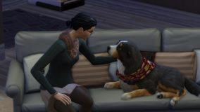 De Sims 4: Honden en Katten   GameCensor
