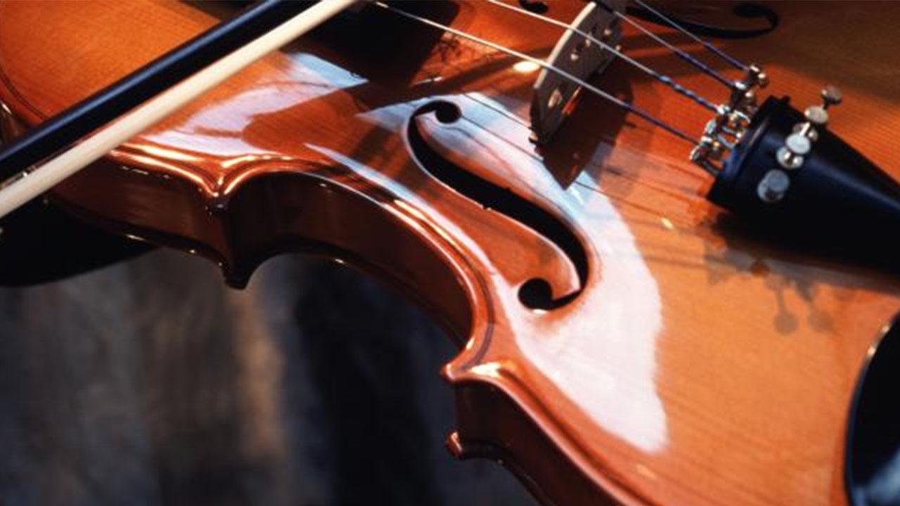 Primephonic klassieke muziek | Pixel Vault