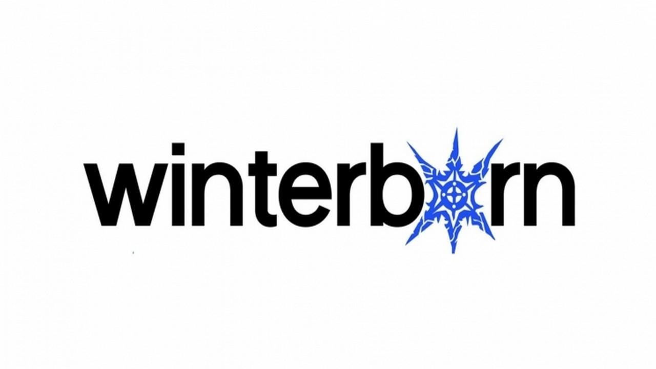 Winterborn Games | Pixel Vault
